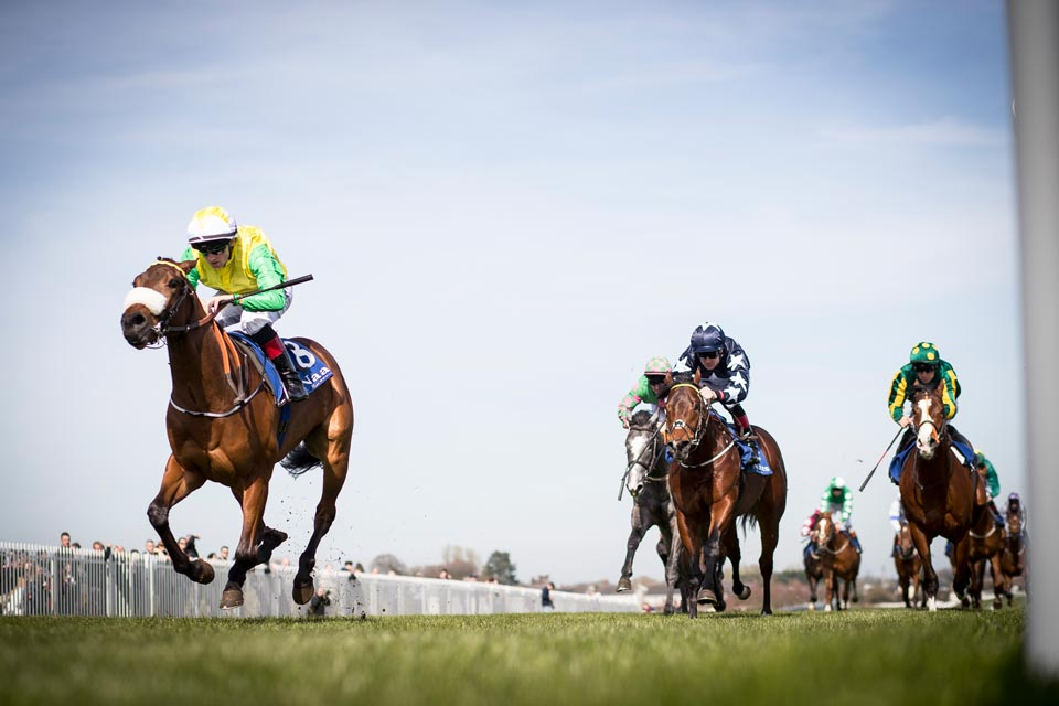 Naas-Racecourse-3
